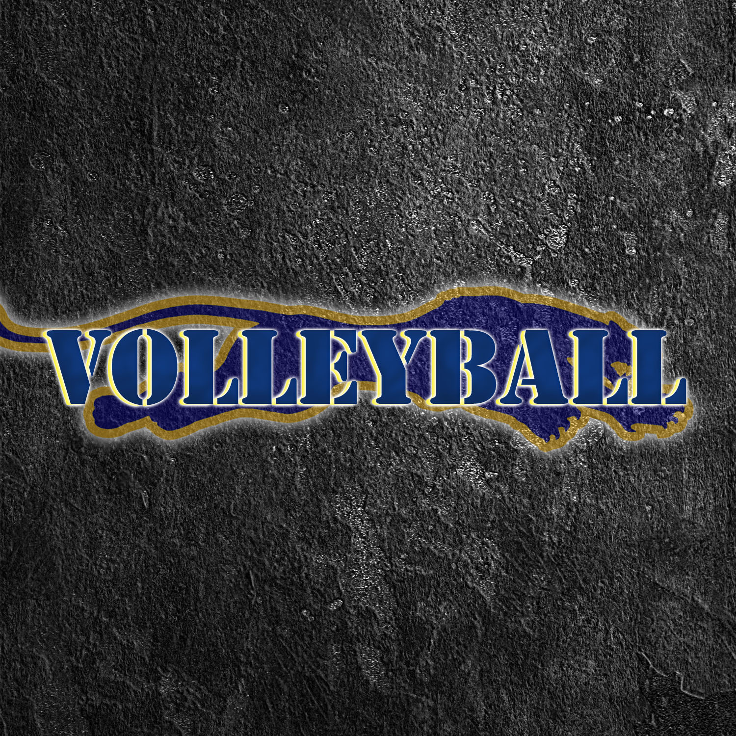 Volleyball WP